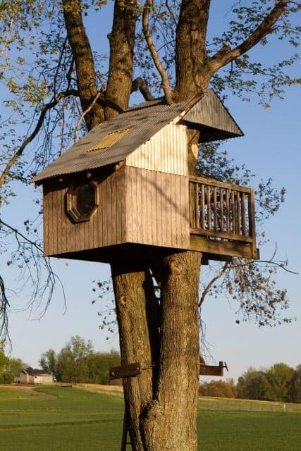 Casa da árvore com uma janela para visualizar o horizonte.