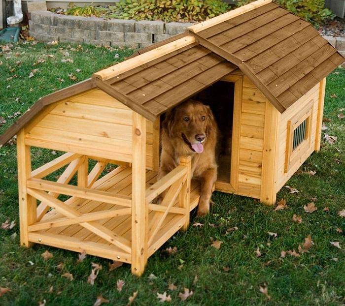 Casinha de cachorro de madeira com deck coberto.