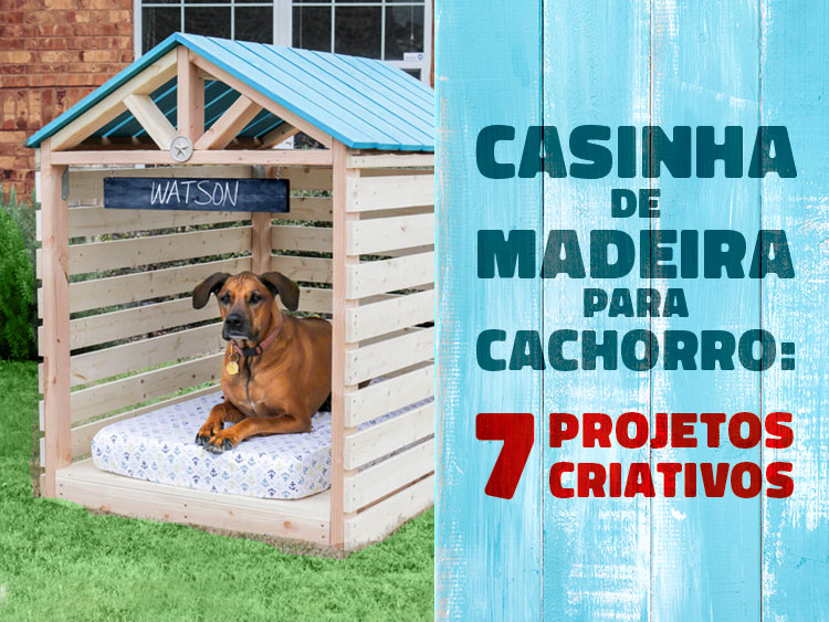 Confira 7 projetos criativos de casinha de cachorro de madeira.
