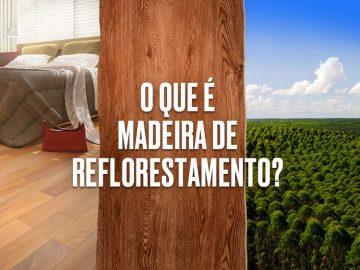 Descubra o que é os tipos de madeira de reflorestamento.
