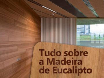 Conheça as características da madeira de eucalipto.